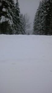 Einfahrt im Winter